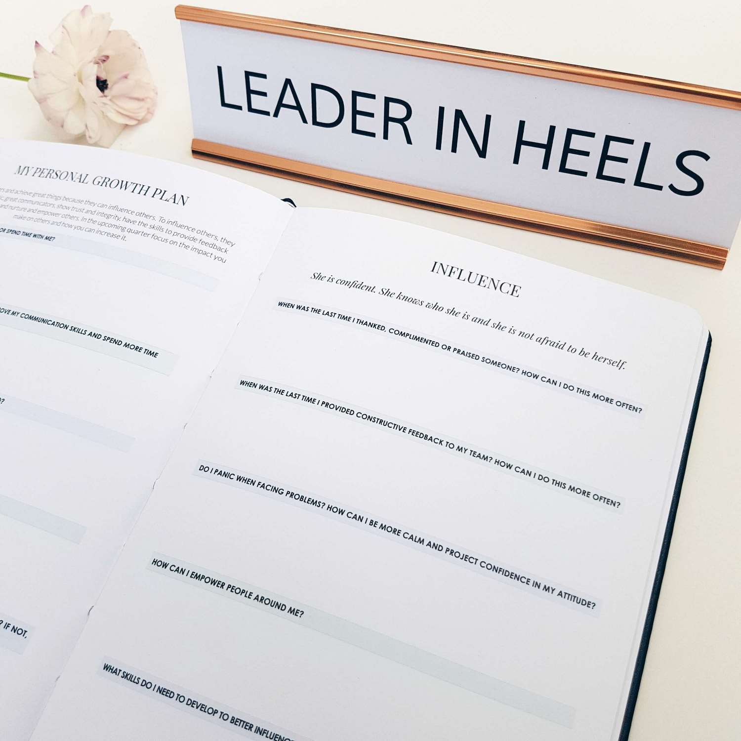 Woman's Best Friend: Clarifying Ideas of Leadership and Authority with Your Dog